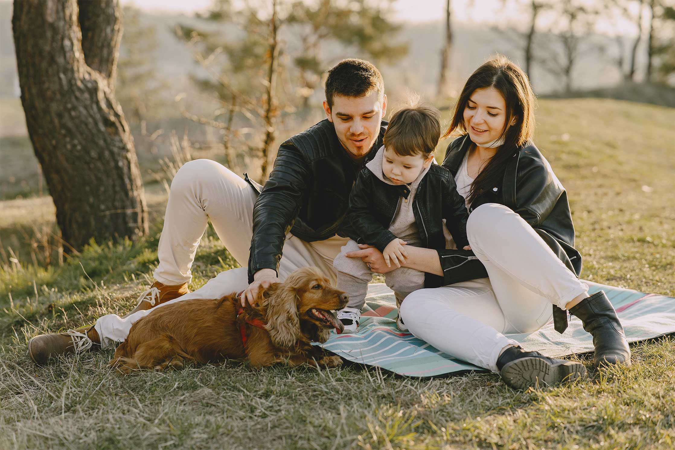 photo-of-family-sitting-on-grass